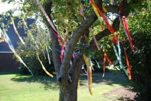 Plymouth Prayer Tree 2